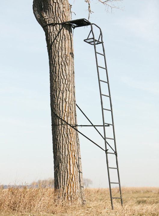Big Game Tree Stands